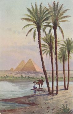 (3 1/2 x 5 1/2 In) This is an original vintage Lehnert & Landrock postcard from the 1910-20s. It shows a view of the Pyramids in Egypt. The card