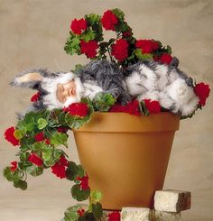 Order flowers celebrating a new baby directly from. New Baby Flowers, Order Flowers, Send Flowers, Flower Delivery, New Baby Products, Planter Pots, Bouquet, Day, Bouquet Of Flowers