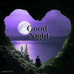 Slaap Lekker, Good Knight, Good Night Blessings, Good Night Gif, Thing 1, Exotic Birds, Blessed, Movie Posters, Nighty Night