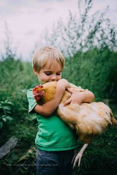 lifestyle farm photography | chicken | rooster | vsco | looks like film | child | boy | family photography | children | moody | beyond the wanderlust featured | blonde | green | rustic | nature | explore | wild and free