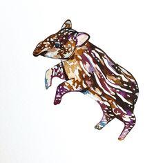 Tapir - Sophie Brabbins