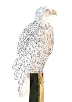 Modern Bathroom Sink, Business Ideas, Bald Eagle, Origami, Owl, Behance, Bird, Digital, Illustration