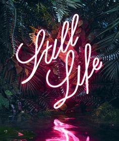 Neon. words. still life