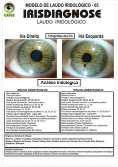 Blog de cursoiridologia : IRIDOLOGIA - CURSO DE IRIDOLOGIA A DISTÂNCIA, MODELO DO LAUDO IRIDOLÓGICO - IRISDIAGNOSE PROFISSIONAL