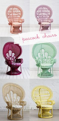 peackock chairs-love them!_my blue flamingo
