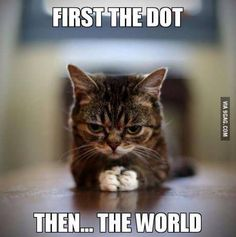 First the DOT then the World