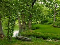 Beautiful scenery in Tx hill country | With Texas Hills Come Valleys, Rivers (& Flooding): How to Handle ...