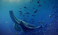 Scientists Identify Giant Shrimp Beast from the Cambrian Explosion