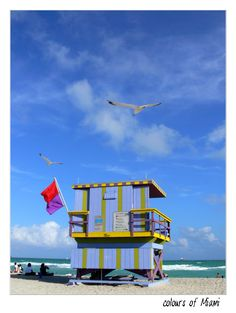 Miami Beach, FL Copyright: Edgar Alejandro Guzman