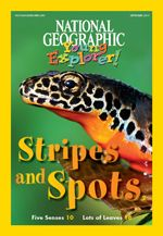 January-February 2013 Stripes & Spots  National Geographic for Kids Free student issue plus free teacher guide