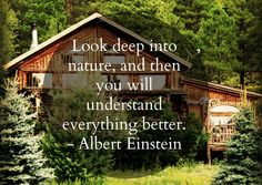 Come stay in the cool pines of Flagstaff, AZ at www.logcabinhomevacation.com #logcabin #ski #bucketlist #grandcanyon #vacationrental #travel #quote #einstein