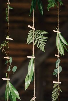 22 Fab Fern-Inspired Wedding Decor Ideas via Brit + Co. Bring the outdoors in with these foliage wedding decor ideas Perfect Wedding, Dream Wedding, Trendy Wedding, Diy Wedding Deco, Fall Wedding, Wedding Rustic, Natural Wedding Decor, Woodland Wedding, Eco Wedding Ideas