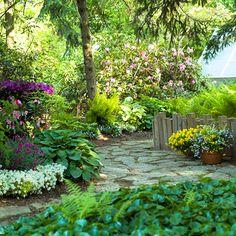Backyard Landscape Solutions