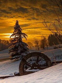 Winter sunset ~Wow a beauty! Winter Sunset, Winter Scenery, Winter Pictures, Cool Pictures, Natur Wallpaper, Landscape Photography, Nature Photography, Photography Backgrounds, Foto Poster