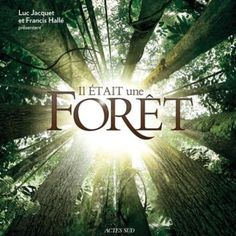 'Once Upon A Forest' directed by Luc Jacquet with Francis Hallé, Michel Papineschi Beau Film, Francis Hallé, Nature Movies, March Of The Penguins, French Movies, Film Disney, The Spectator, Oscar, Documentary Film