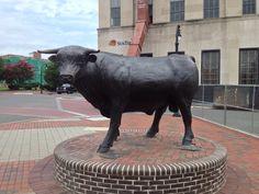 The Bull on Corcoran Street