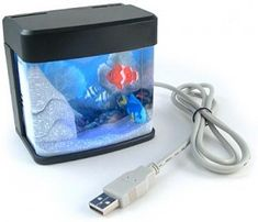My favorite is the USB powered fish bowl.. A list of the top ten pimp my cubicle ideas