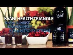 kyani triangle of health - Google Search