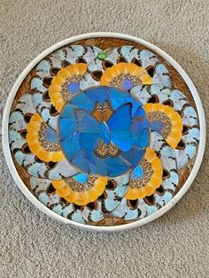"""RARE 70's VINTAGE REAL BUTTERFLY WING PLATE ART/ Brazil / 15"""" DIAMETER  