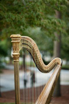 MÚSICA ♪♫♥ ♪♫♥ arpa.....La música es el corazón de la vida. Por ella habla el amor; sin ella no hay bien posible y con ella todo es hermoso. Franz Liszt