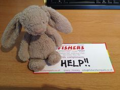 Can you help this lost jellycat bunny find his Mummy. He was found at Fishers Farm Park Wisborough Green, West Sussex. Contact: https://twitter.com/FishersFarmPark