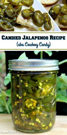 Are you having a good pepper season and find your self with a ton of jalapenos? This is a must try recipe for Candied Jalapenos (aka Cowboy Candy)! This is a canning recipe with a fridge option. Pickled Jalapeno Recipe, Jalapeno Jelly Recipes, Canning Jalapeno Peppers, Jalapeno Relish, Candied Jalapenos, Pepper Jelly Recipes, Relish Recipes, Stuffed Jalapeno Peppers, Canning Recipes