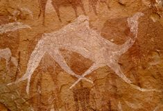 White painting of a single humped camel, Ennedi Plateau.
