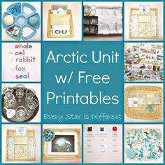 Arctic learning activities and free printables for kids.