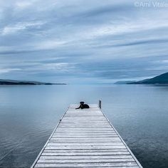 """Photo by @amivitale. Gus relaxes at Flathead Lake in Montana. I don't think he is thinking much about yesterday or tomorrow but rather his affection for people and what is for dinner. """"Dogs are better than human beings because they know but do not tell."""" Emily Dickinson  @natgeocreative @thephotosociety @nikonusa @natgeo #flatheadlake #flatheadlakemontana #conservation #dogsofinstagram #dogs #animals #natureisspeaking #emilydickinson #nature #seetheworld #bestdestinations #nikonnofilter…"""