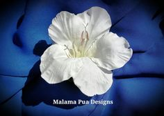 HIBISCUS HAIR CLIP Fascinator Headpiece Tropical by MalamaPua, $16.99
