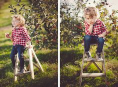 apple orchard family photo shoot   This family looks like they're having fun. Thanks for the photos ...