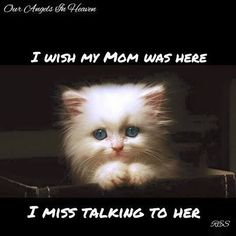 9 Best Missing My Mom Quotes Images My Mom Quotes Favorite Quotes
