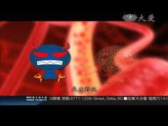 最強的捍衛戰士 人體免疫系統 20120204_19005