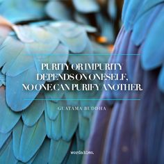 Wisdom from Buddha 04