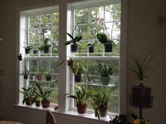 I love these window shelves from beautifulviews.net