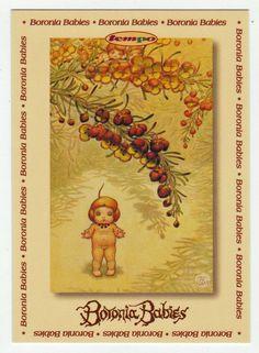 May Gibbs Cards # 95 - Boronia Babies
