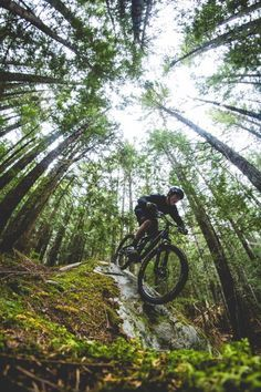 Great perspective! // Mountain Biking // Downhill