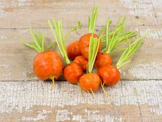 Parisienne Carrot: Small, round carrots that are so popular in France. Tender, orange globes are superb lightly steamed. Easy to grow even in heavy soils. This little carrot is great for home and market gardens, as this variety is fairly uniform. Edible Garden, Vegetable Garden, Garden Plants, Garden Seeds, Root Vegetables, Growing Vegetables, Veggies, Hydroponic Gardening, Organic Gardening