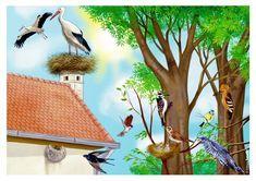 Pasari De Primavara Pictures to Pin on Pinterest - PinsDaddy Spring Pictures, Teaching Methods, Stork, Bird Feeders, Coloring Books, Christmas Cards, Preschool, Birds, Seasons
