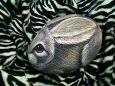 Bunny rabbit Rock Pet