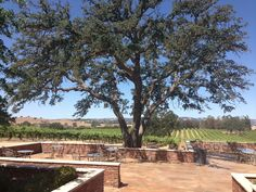 Robert Hall Winery, Paso Robles