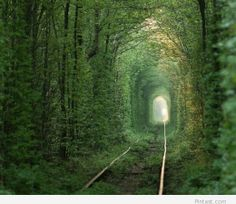 Tunnel of Love in Klevan ประเทศยูเครน Places Around The World, Oh The Places You'll Go, Places To Travel, Travel Destinations, Places To Visit, Around The Worlds, Beautiful Places In The World, Hidden Places, Tunnel Of Love Ukraine