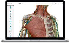Launch Human Anatomy Atlas 2018 Human Anatomy, Product Launch, Human Body Anatomy, Body Anatomy