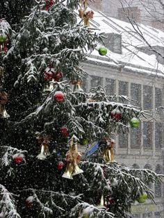 White Christmas in Boston