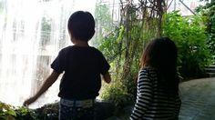 植物園再び