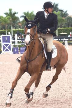 So this is Eric Lamaze's new horse - Carrot Cake.