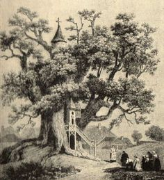 """The Chêne chapelle """"chapel oak"""" is an oak tree located in Allouville-Bellefosse in Seine-Maritime, France. The oak tree is between 800 and 1,200 years old and its hollow trunk hosts two chapels, which were built there in 1669 and are still used"""
