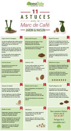Découvrez 11 astuces pour votre jardin et votre maison avec le marc de café