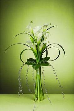 Egy szál fehér virág