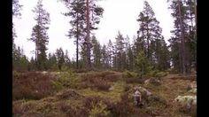 kontojärvi - YouTube